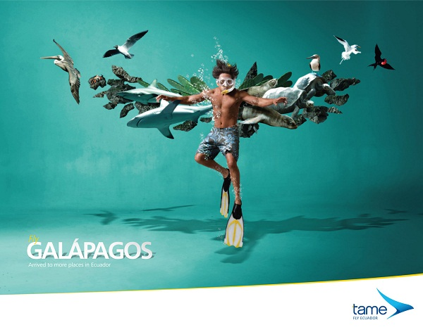 Tame Ecuador Airlines宣传海报 - 图6