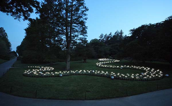 Bruce munro lights - 图2