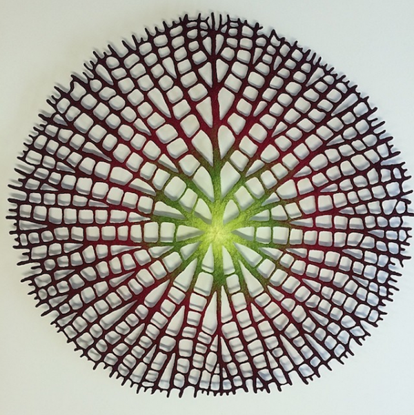 Meredith Woolnough的叶脉刺绣 - 图2