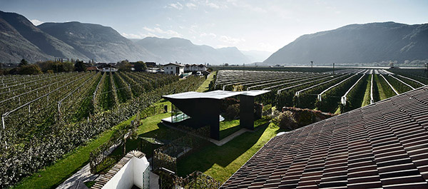 Mirror Houses / Peter Pichler Architecture - 图4