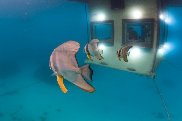 浮在海上的水下酒店 THE MANTA RESORT UNDERWATER HOTEL ROOM - 图6